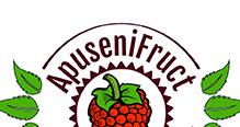 08-apusenifruct-client