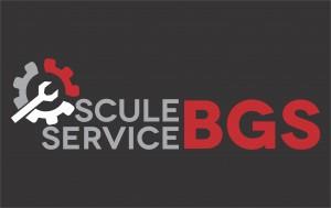 logo BGS_fundal negru